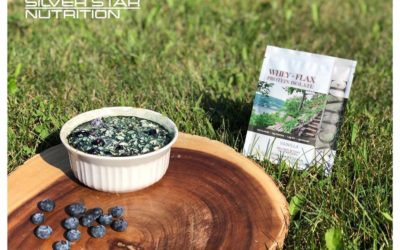 Blueberry Oatmeal Bake
